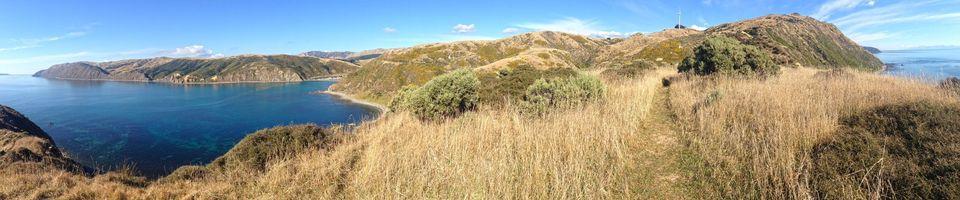 Бесплатные фото остров,скалы,холмы,океан,трава,осень,природа