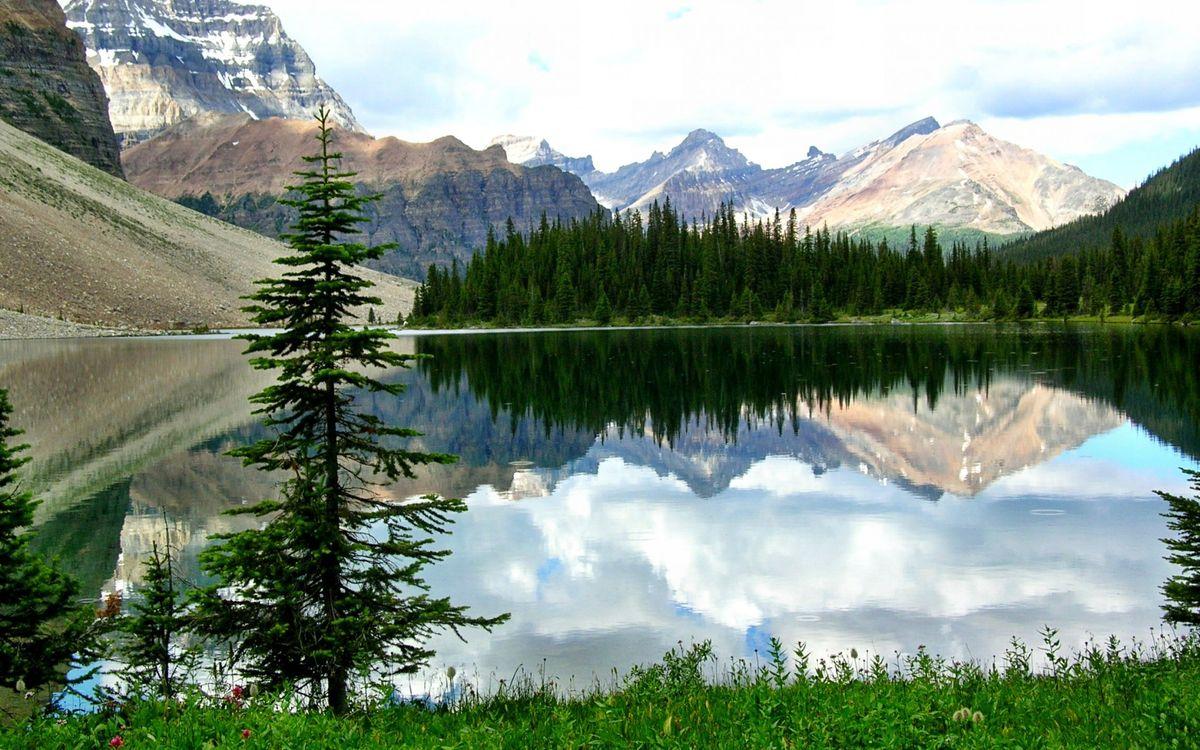 Фото бесплатно озеро, горы, елки, лес, зелень, лето, пейзажи, пейзажи