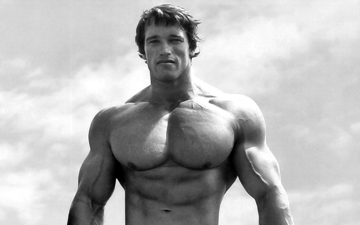Free photo arnold, schwarzenegger, youth - to desktop
