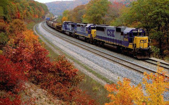 Бесплатные фото поезд,локомотив,состав,рельсы,дорога,железная,кусты,деревья,осень,листья,желтые,город