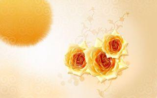 Обои розы, цветы, букет, желтые, лепестки, фон, розовый, пятно, узор, рисунок, абстракции