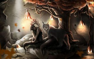 Бесплатные фото рысь,девушка,дерево,корни,пещера,свет,фонари