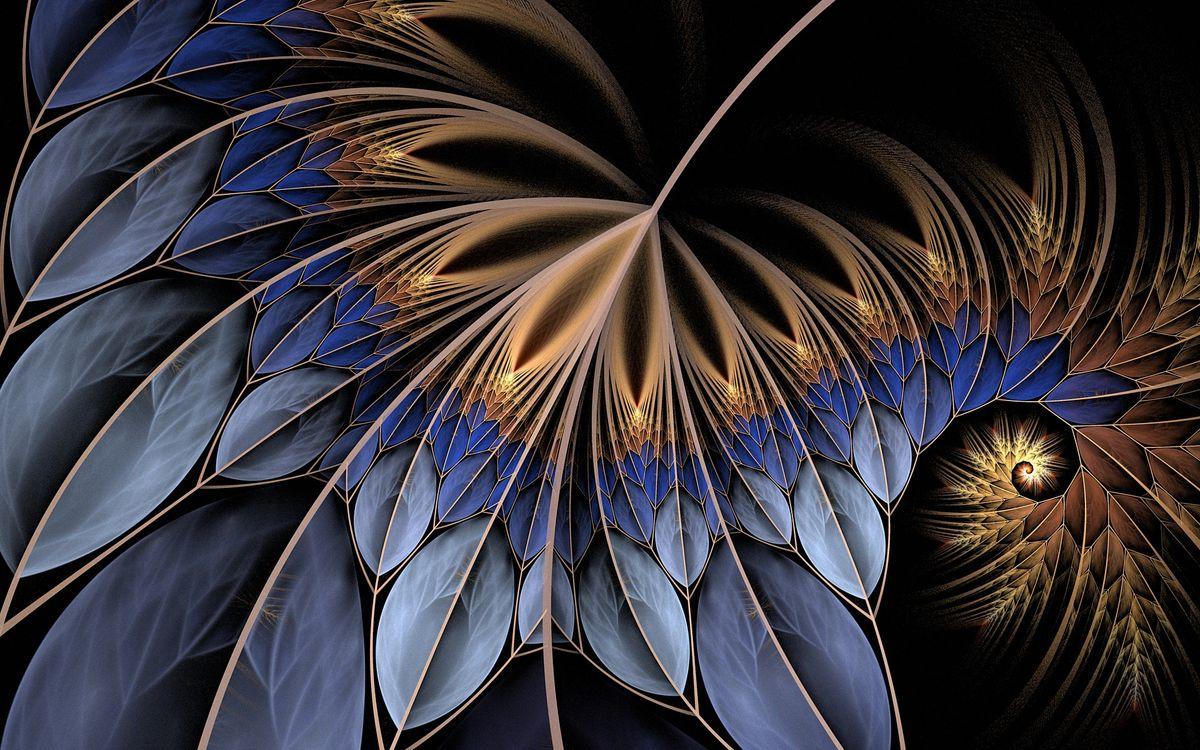 Фото бесплатно узор, рисунки, линии, градиент, цвета, переходы, фон, черный, абстракции, абстракции