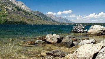 Бесплатные фото вода,скалы,камни,деревья,лес,небо,голубое