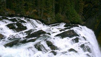Бесплатные фото водопад,быстро,лес,деревья,камни,красиво,природа