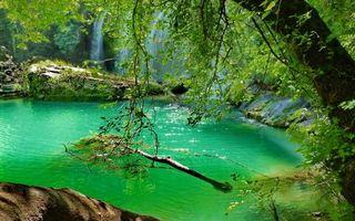 Заставки водопад,лес,деревья,зелень,лето,камни,валуны
