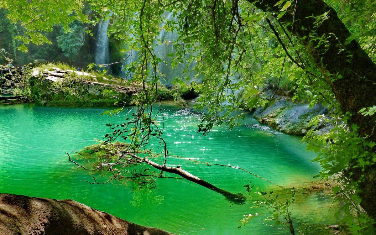 Фото бесплатно водопад, лес, деревья, зелень, лето, камни, валуны, природа, природа