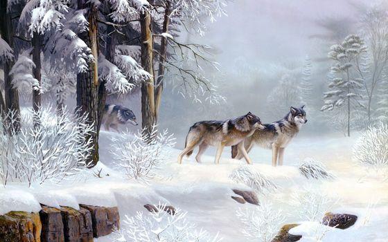 Фото бесплатно волки, стая, зима