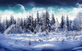 Бесплатные фото заснеженные ели,луна,снег,облака,деревья,сугробы,природа