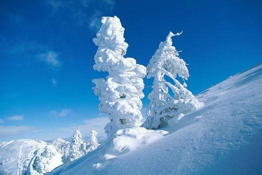 Photo free mountain, slope, snow