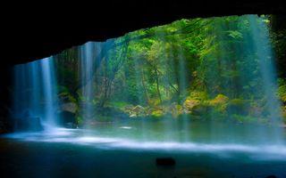 Бесплатные фото лес,скала,река,природа,водопад