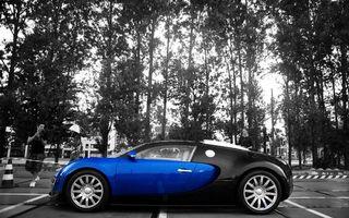 Бесплатные фото bugatti,veyron,автомобиль,синий,черный,серый,деревья