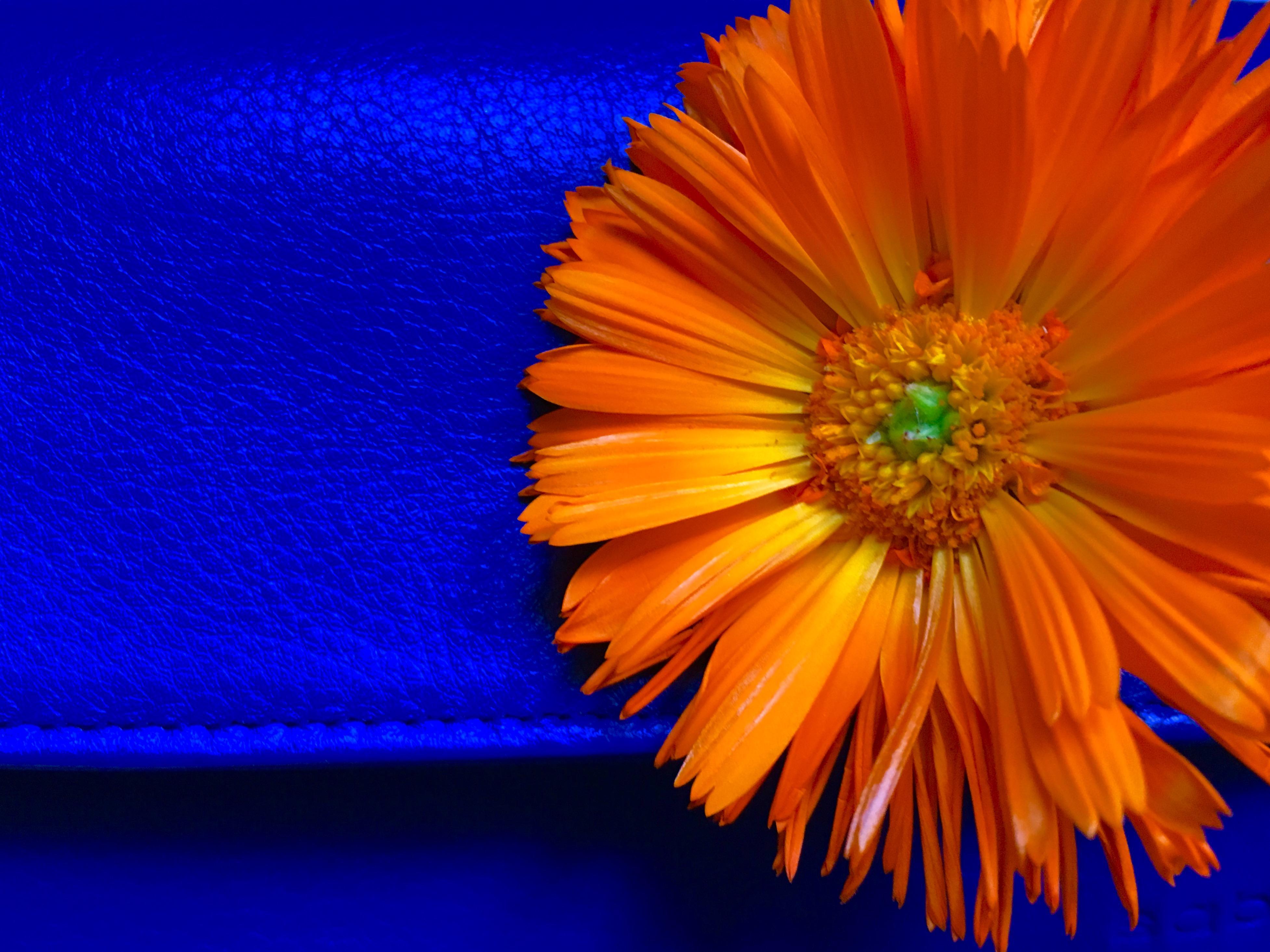 Обои абстракция, цветной фон, разноцветный фон, текстура