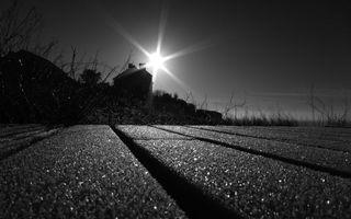 Фото бесплатно дорога, дом, свет, солнце, фото, черно-белое, ветки, деревья, кусты, трава, небо, природа