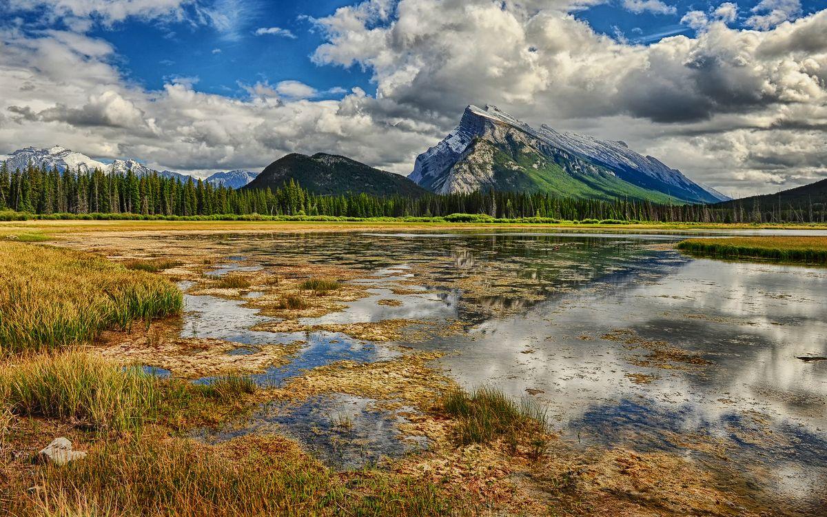 Фото бесплатно гора, лес, елки, трава, болото, тина, облака, пейзажи, пейзажи