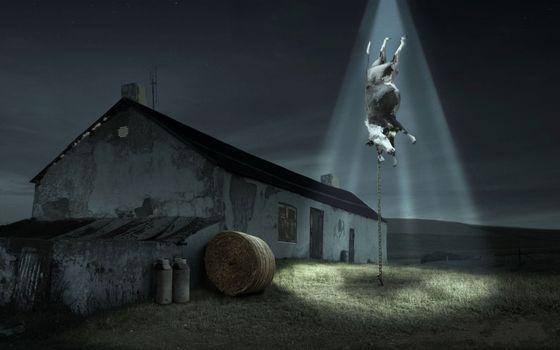 Фото бесплатно похищение, коровы, нло