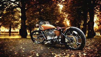 Бесплатные фото жёлто-коричневый harley-davidson,осенние листья,деревья,мотоцикл,байк,мотоциклы