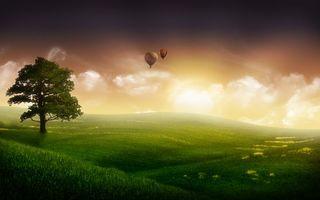 Бесплатные фото поля,луга,дерево,воздушные шары,небо,облака,разное