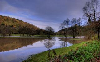 Фото бесплатно река, отражение, трава