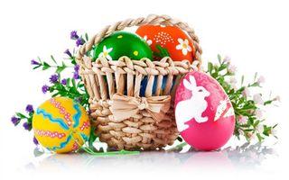 Обои яйца, цветы, фон, отражение, корзинка, белый, разное