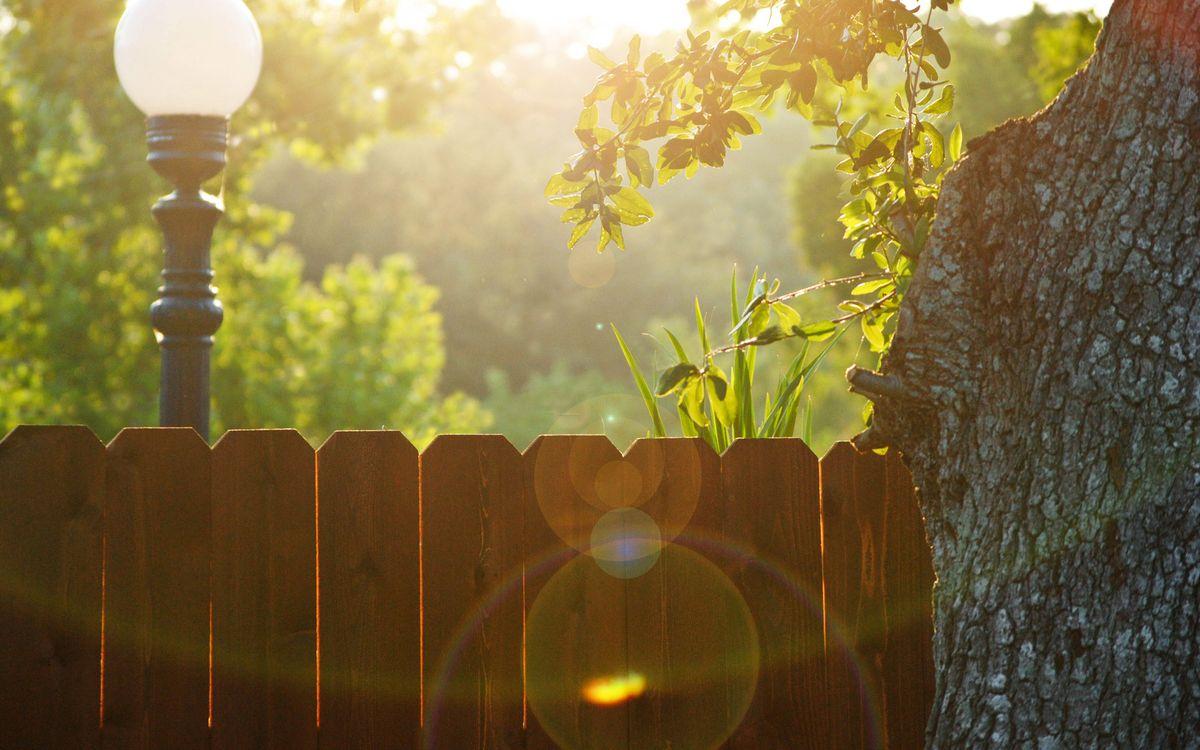 Фото бесплатно двор, забор, фонарь, улица, солнце, утро, дерево, разное, разное