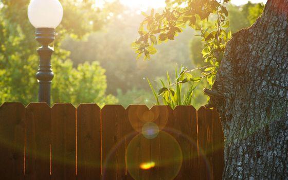 Бесплатные фото двор,забор,фонарь,улица,солнце,утро,дерево,разное