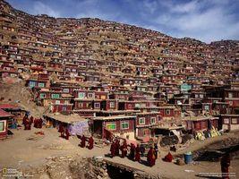 Бесплатные фото поселок,дома,здание,красный,бардовый,окно,разноцветный