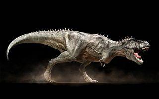 Фото бесплатно динозавр, хищник, тиранозавр