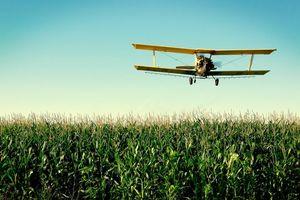 Photo free corncrew, airplane, air