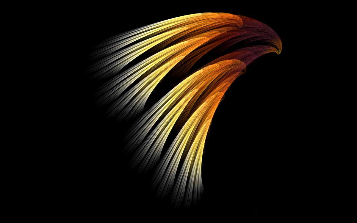 Фото бесплатно линии, фон, цвета, полосы, черный, абстракции, абстракции