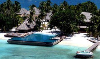 Бесплатные фото океан,вода,пальмы,небо,песок,деревья,лето