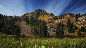 Бесплатные фото озеро, вода, горы, лес, деревья, трава, природа