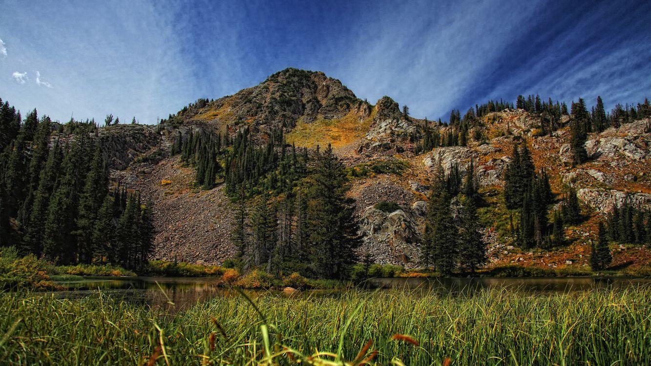 Фото бесплатно вода, горы, трава - на рабочий стол