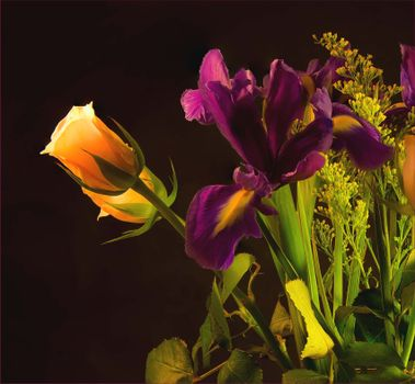 Фото бесплатно розы, ирис, цветы, флора