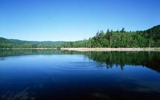 Бесплатные фото вода,лес,деревья,озеров,природа,пейзажи