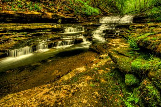 Бесплатные фото Meadow Creek Cascades,Wayne County,Kentucky,водопад,речка,скалы,деревья,природа