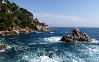 Бесплатные фото побережье,гора,камни,деревья,кустарник,море,горизонт