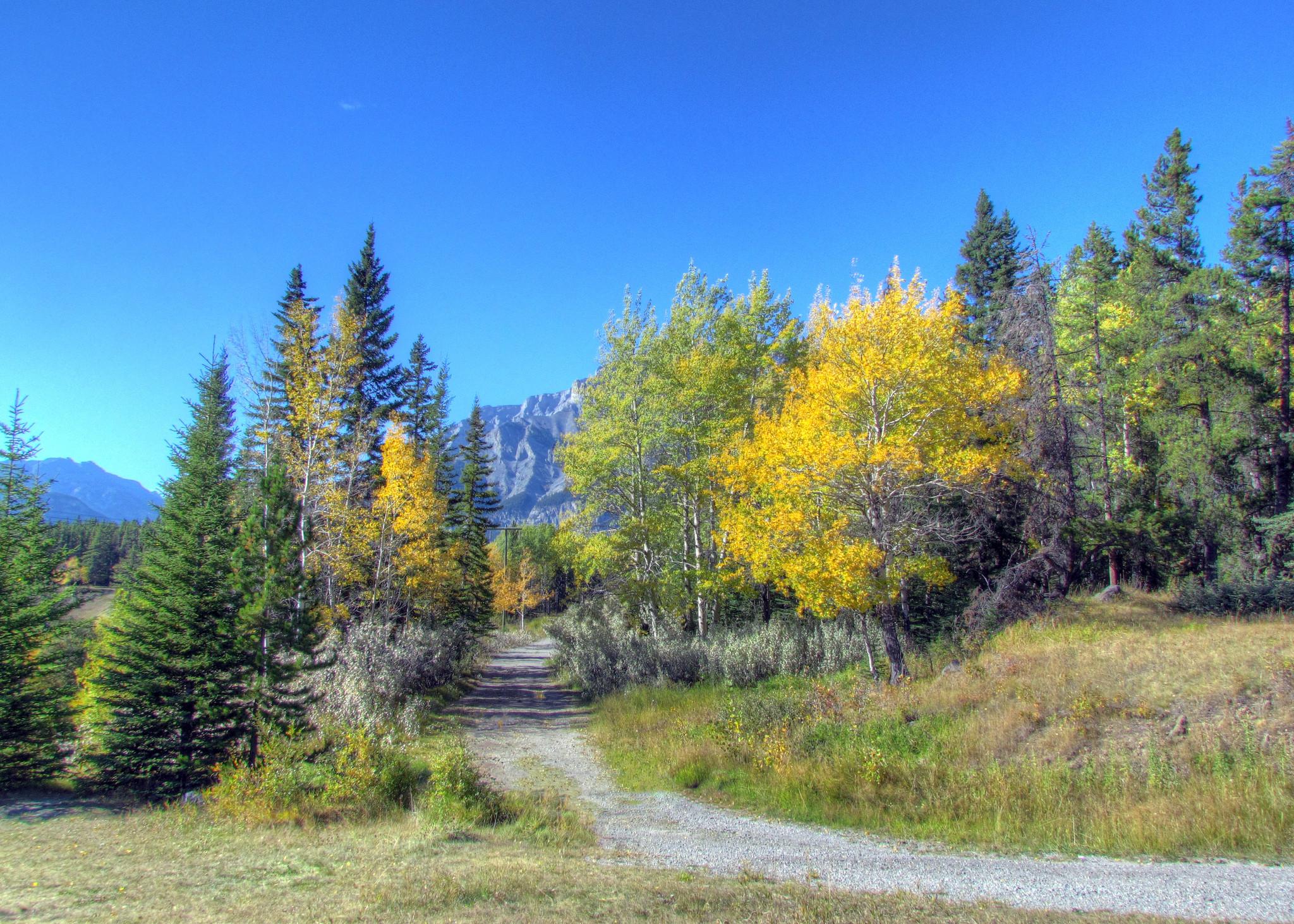 обои Johnson Lake, Banff National Park, осень, горы картинки фото