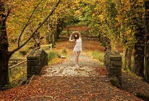 Бесплатные фото осень, парк, мост, деревья, девушка, пейзаж