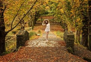 Photo free autumn, park, bridge