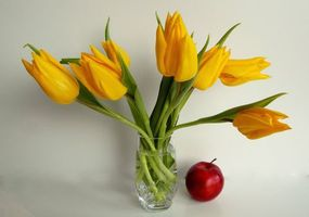 Обои тюльпаны, яблоко, натюрморт