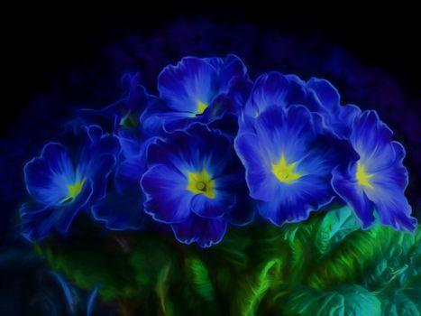 цветы, букет, примула, флора, art