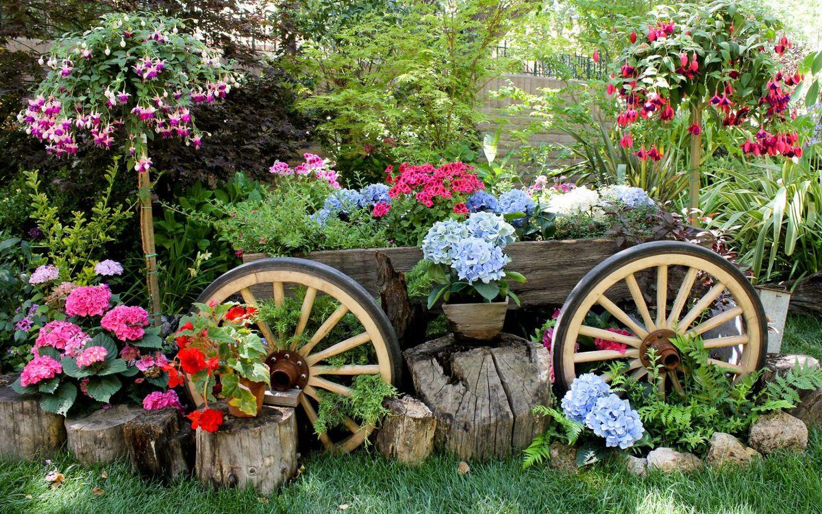 Фото бесплатно клумба, дизайн, телега, колеса, пеньки, камни, цветы, цветы