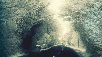 Фото бесплатно зимняя дорога, деревья, снег
