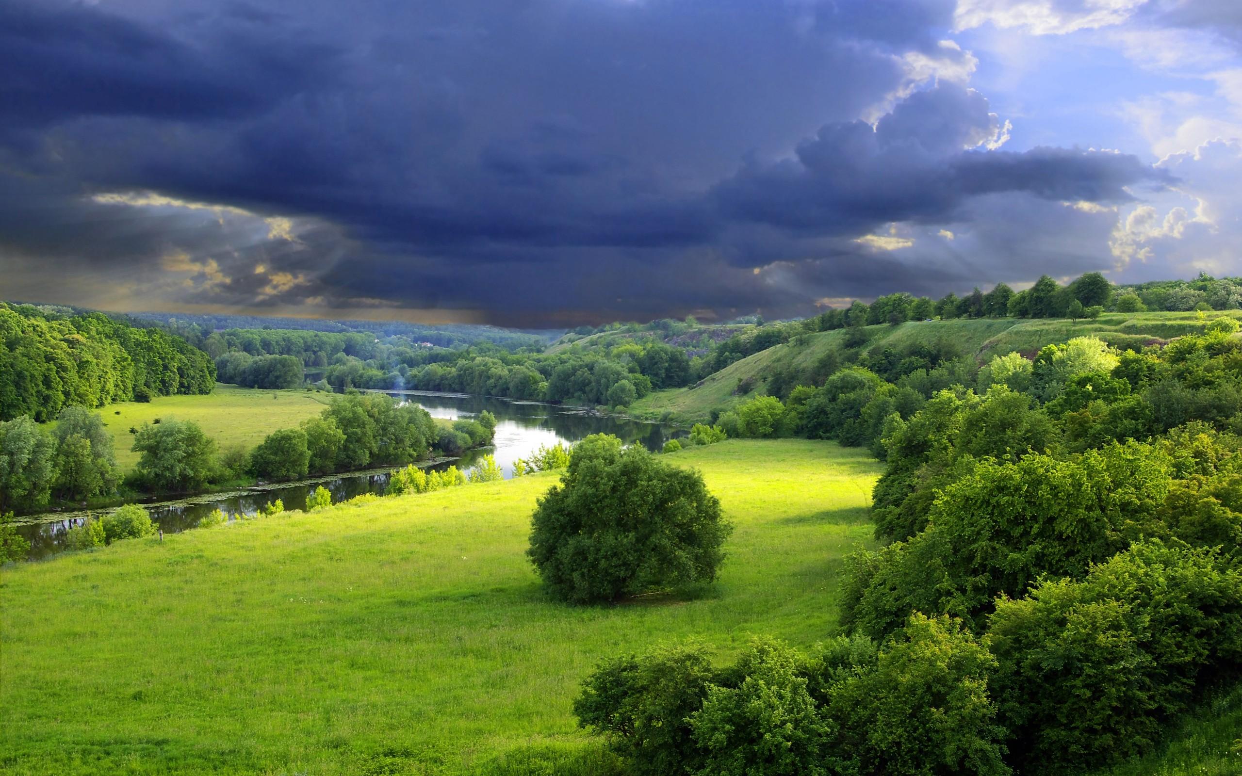 река деревья трава природа скачать