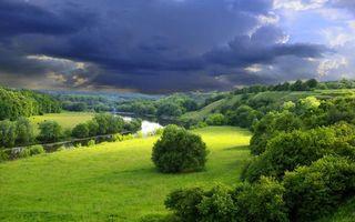 Бесплатные фото река,деревья,трава,зелень