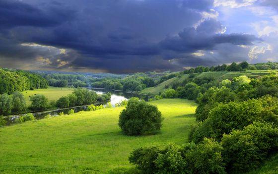 Фото бесплатно река, трава, зелень
