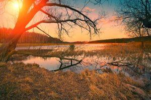 Бесплатные фото осень,река,закат,деревья,пейзаж