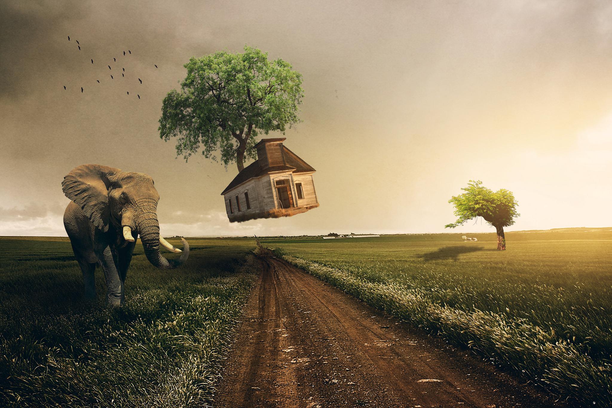 Обои Произведение, фотошоп, закат, поле
