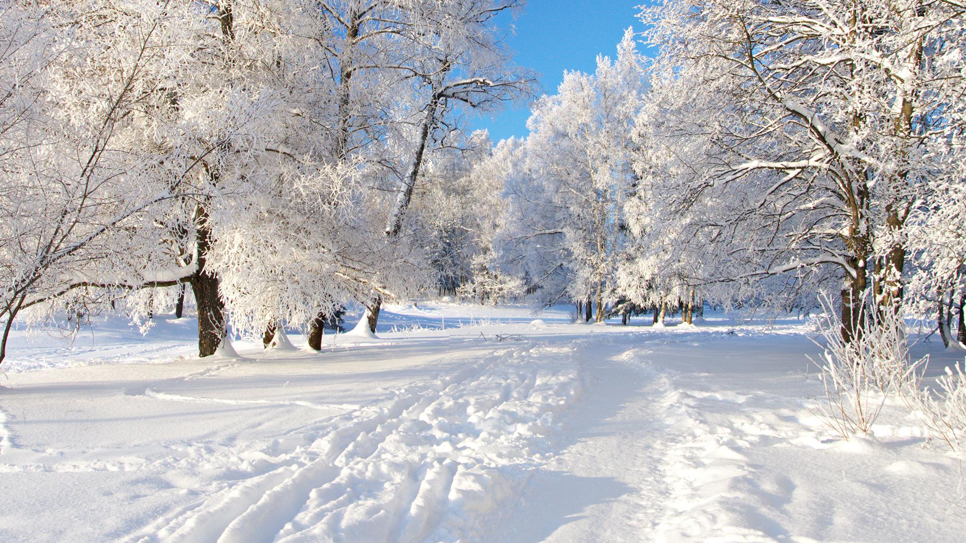 красивые обои для рабочего стола во весь экран зима № 208968 бесплатно